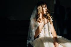 Imagem misteriosa da noiva impressionante escondida sob o véu claro foto de stock royalty free