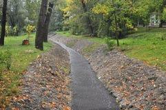 Imagem pouco rio no parque do outono imagens de stock