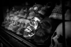 Imagem preto e branco dos crânios na janela de mostra imagem de stock royalty free