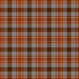 Imagem quadriculado sem emenda rural do teste padrão da tartã Imagem de Stock