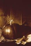 Imagem retro da ação de graças com abóbora e folhas de outono Fotos de Stock