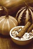 Imagem retro da abóbora da ação de graças com sementes de abóbora Fotos de Stock