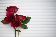 Imagem romântica da fotografia das rosas vermelhas reais frescas polvilhadas com o brilho em um fundo e em um espaço de madeira n Imagens de Stock Royalty Free