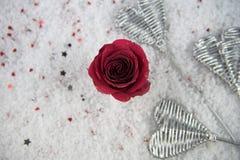 A imagem romântica da fotografia da estação do inverno do Natal ou do Valentim da rosa do vermelho floresce na neve com pétalas d Fotos de Stock