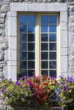 Imagem simples da janela coberta de pedra com variações da flor na parte dianteira fotos de stock