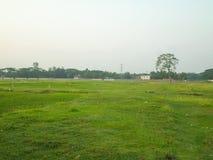 Imagem verde do campo Imagens de Stock Royalty Free