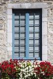 Imagem vertical simples da janela coberta de pedra com variações da flor na parte dianteira foto de stock