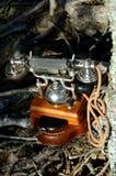 Imagen abstracta con el tel?fono del vintage en bosque entre ra?ces y ?rboles foto de archivo