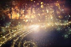 Imagen abstracta y mágica del vuelo de la luciérnaga del brillo en el concepto del cuento de hadas del bosque de la noche imágenes de archivo libres de regalías