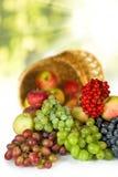 Imagen aislada del primer de las frutas Fotografía de archivo libre de regalías