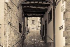 Imagen blanco y negro de la sepia del callejón histórico fotos de archivo