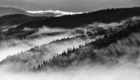 Imagen blanco y negro del paisaje de colinas fotografía de archivo