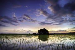 Imagen borrosa y suave de la silueta del foco de la casa sola del abandono en el campo de arroz medio con el fondo hermoso de la  Imagen de archivo
