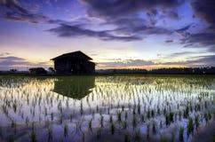 Imagen borrosa y suave de la silueta del foco de la mañana hermosa con la casa sola del abandono y de la reflexión en el agua, ro Imágenes de archivo libres de regalías
