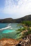 Imagen común de la bahía de Hanauma, Oahu, Hawaii fotos de archivo libres de regalías