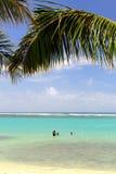 Imagen común de la playa de Waikiki, Honolulu, Oahu, Hawaii imagen de archivo libre de regalías