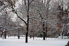 Imagen común de un invierno que nieva en Boston, Massachusetts, los E.E.U.U. Foto de archivo