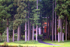 Imagen común del lago Hakone, Japón Foto de archivo