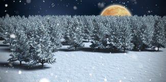 Imagen compuesta de la imagen digital generada de árboles en campo nevoso Fotos de archivo libres de regalías