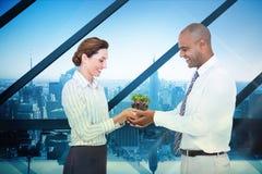 Imagen compuesta de los colegas del negocio que mantienen la planta unida Foto de archivo libre de regalías