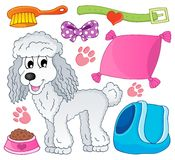 Imagen con el tema 9 del perro Fotografía de archivo
