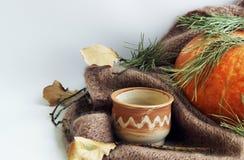imagen con una calabaza grande, una taza de la arcilla y las ramas de un árbol de navidad en un fondo ligero foto de archivo libre de regalías