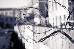 Imagen conceptual blanco y negro de un alambre de púas foto de archivo libre de regalías