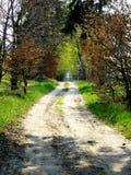 Imagen conceptual de las zonas sin caminos. Imágenes de archivo libres de regalías