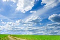 Imagen conceptual del campo verde y del cielo azul. Fotografía de archivo libre de regalías