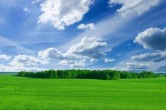 Imagen conceptual del campo y del bosque. Foto de archivo