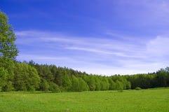Imagen conceptual del campo y del bosque. Foto de archivo libre de regalías