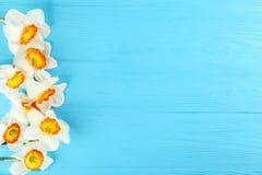 Imagen conceptual del humor de la primavera Flores estacionales en fondo brillante imágenes de archivo libres de regalías