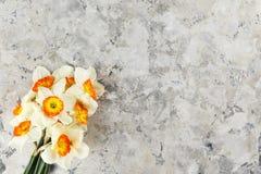 Imagen conceptual del humor de la primavera Flores estacionales en fondo brillante fotografía de archivo libre de regalías