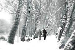 Imagen conceptual del invierno. Foto de archivo