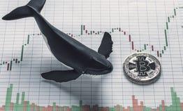Imagen conceptual del tenedor de la ballena de Bitcoin fotografía de archivo