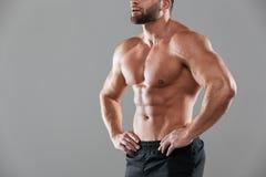 Imagen cosechada de un culturista masculino descamisado fuerte muscular Imágenes de archivo libres de regalías