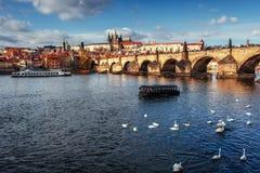 Imagen de Charles Bridge en Praga con los pares Fotografía de archivo