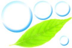 Imagen de Eco Fotos de archivo