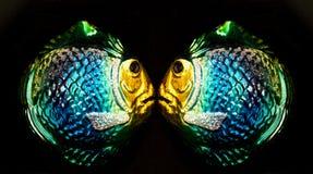 Imagen de espejo de dos ornamentos de cristal de la Navidad de los pescados Imágenes de archivo libres de regalías