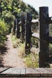 imagen de falta de definición de Kew Mae Pan Nature Trail y x28; PA nacional de Doi Inthanon Foto de archivo