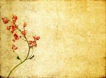 Imagen de fondo con los elementos florales Fotografía de archivo libre de regalías