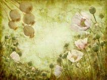 Imagen de Grunge de amapolas stock de ilustración