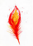 Imagen de la acuarela de la pluma roja del pavo real Foto de archivo