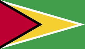 Imagen de la bandera de Guyana stock de ilustración