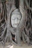 Imagen de la cabeza de Buda en Wat Mahathat foto de archivo