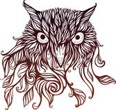 Imagen de la cabeza del búho Imagenes de archivo