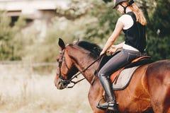 Imagen de la chica joven que monta su caballo Imagen de archivo