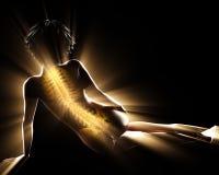 Imagen de la exploración de la radiografía de los huesos de la mujer Imagen de archivo libre de regalías
