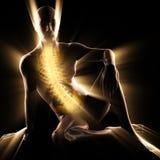 Imagen de la exploración de la radiografía de los huesos del ser humano Foto de archivo