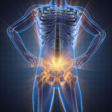 Imagen de la exploración de la radiografía de los huesos del ser humano Imagenes de archivo